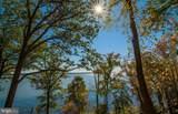 17321 Virginia Pine Way - Photo 40