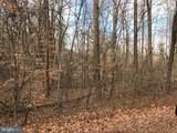 White Oak - Photo 1