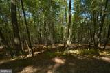 LOT 20 North Shore West Smith Pointe Rd (Thousand Acres) - Photo 12