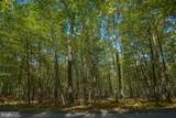 LOT 20 North Shore West Smith Pointe Rd (Thousand Acres) - Photo 22