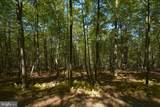 LOT 20 North Shore West Smith Pointe Rd (Thousand Acres) - Photo 3