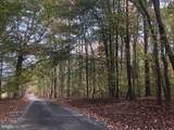 LOT 4 Daleview Lane - Photo 3