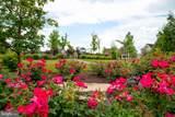 23555 Bingley Manor Terrace - Photo 14