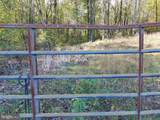 16420 Cedar Lawn Drive - Photo 8