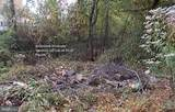 1520 Shoreside Trail - Photo 12
