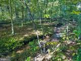 Aquia Creek Rd, 65.96405 Ac - Photo 4