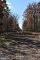 Lot 25 Cabin Run Road - Photo 17