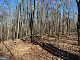5000 Old Martinsburg Grade Road - Photo 12