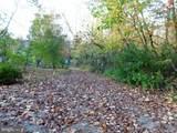 114 Summer Springs Lane - Photo 14