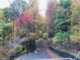 1336 Massanutten Mountain Drive - Photo 44