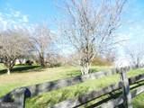 11269 Old Stillhouse Road - Photo 67