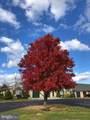 13105 Little Hayden Circle - Photo 16