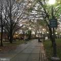 110 Wharton Street - Photo 40