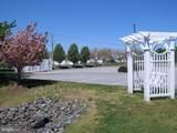 30619 Cedar Neck Road - Photo 39
