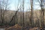 27.53 Acres Hickory Tree Rd - Photo 12