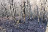27.53 Acres Hickory Tree Rd - Photo 13