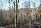 27.53 Acres Hickory Tree Rd - Photo 14