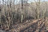 27.53 Acres Hickory Tree Rd - Photo 23