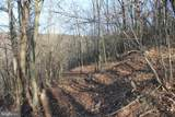 27.53 Acres Hickory Tree Rd - Photo 24