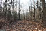 27.53 Acres Hickory Tree Rd - Photo 25