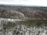 Lot 217 Doman Ridge Rd - Photo 30