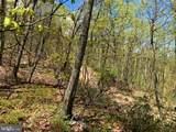 0 Firetower Trail - Photo 2