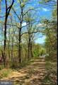 0 Firetower Trail - Photo 3
