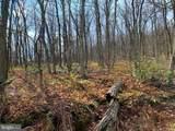 0 Firetower Trail - Photo 7