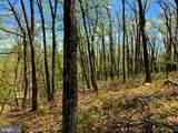 0 Firetower Trail - Photo 8