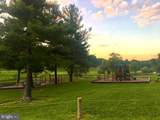 0 Cub Trail - Photo 9