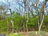 0 Timber Ridge Trail - Photo 7