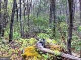0 Mountain Falls Trail - Photo 2