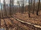Dumpling Ridge Road - Photo 1
