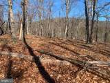 Bluffs Trail Drive - Photo 12