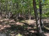 Bluffs Trail Drive - Photo 18