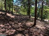 Bluffs Trail Drive - Photo 19