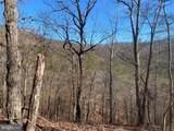 Bluffs Trail Drive - Photo 6