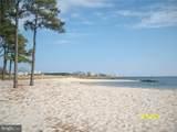 32936 Mimosa Cove - Photo 46