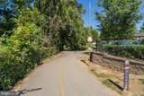 350 Elm Street - Photo 18