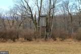 3346 Elk Garden Hwy - Photo 24