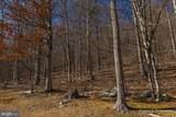 135 Gray Ridge Lane - Photo 59
