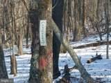 1508 Park Line Road - Photo 6