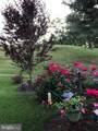 140 Oak View Drive - Photo 47