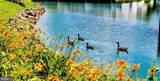 3401 Lakeside View Drive - Photo 30