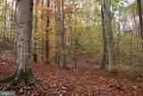 Tree Farm Lane - Photo 2