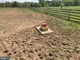 115 Meadow View Lane - Photo 24