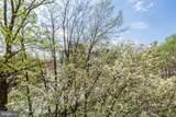8360 Greensboro Drive - Photo 51