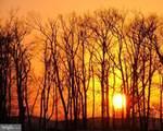 23 Tree Camp - Photo 3