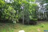 110 Wood Thrush Lane - Photo 3