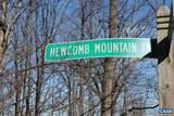 53 Newcomb Mountain Ln Lane - Photo 3